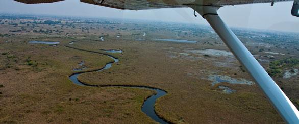 IMG_3402_Okavango_586