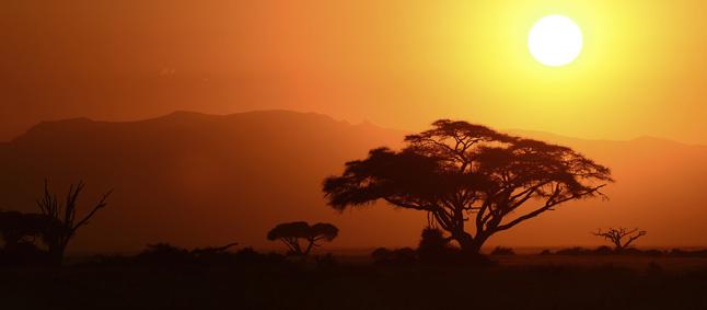 http://www.mittafrika.net/wp-content/uploads/2012/12/DSC_1947w_646.jpg